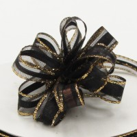 Center Stripe Sheer Pull Ribbon